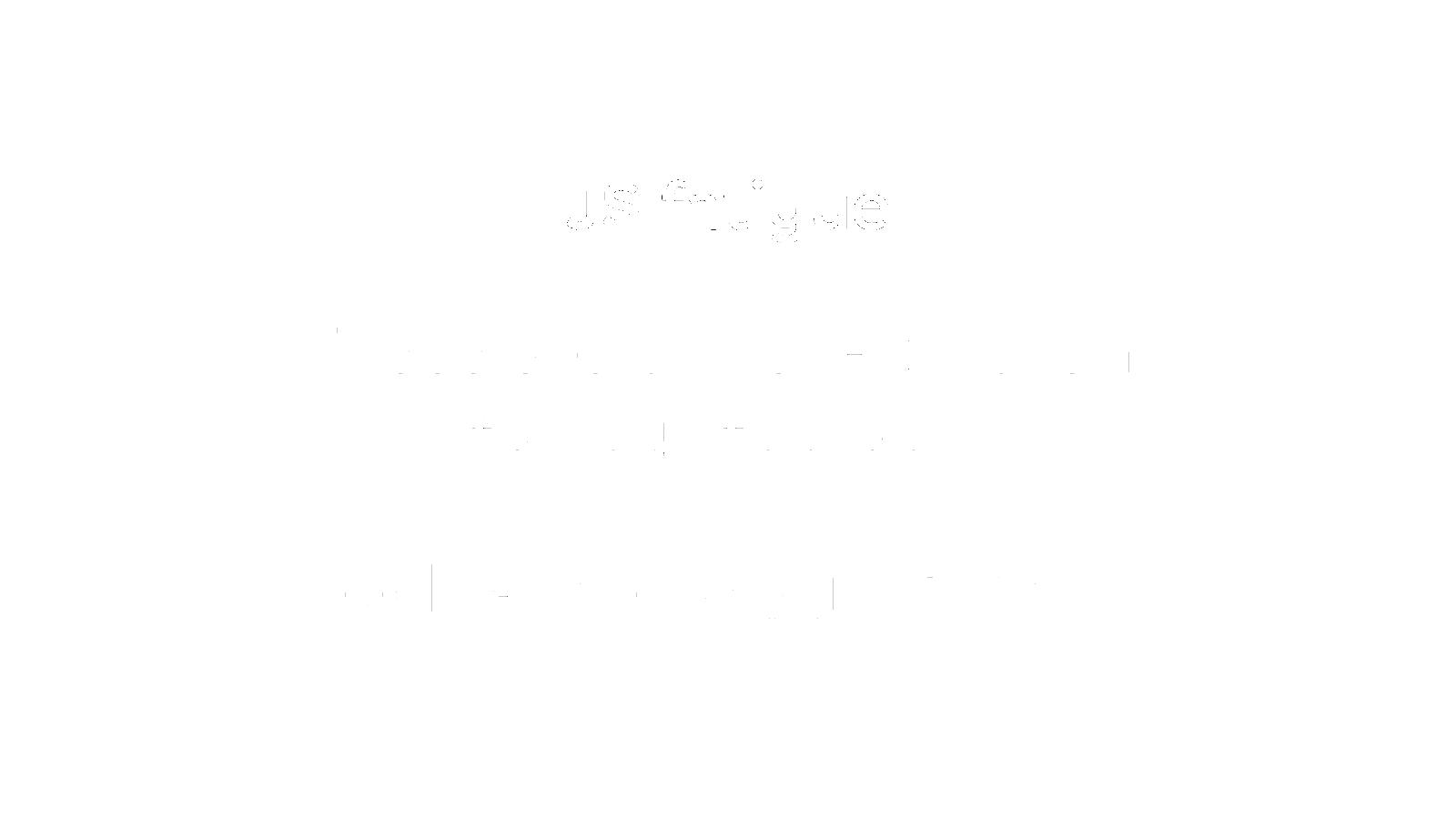 Slide 46