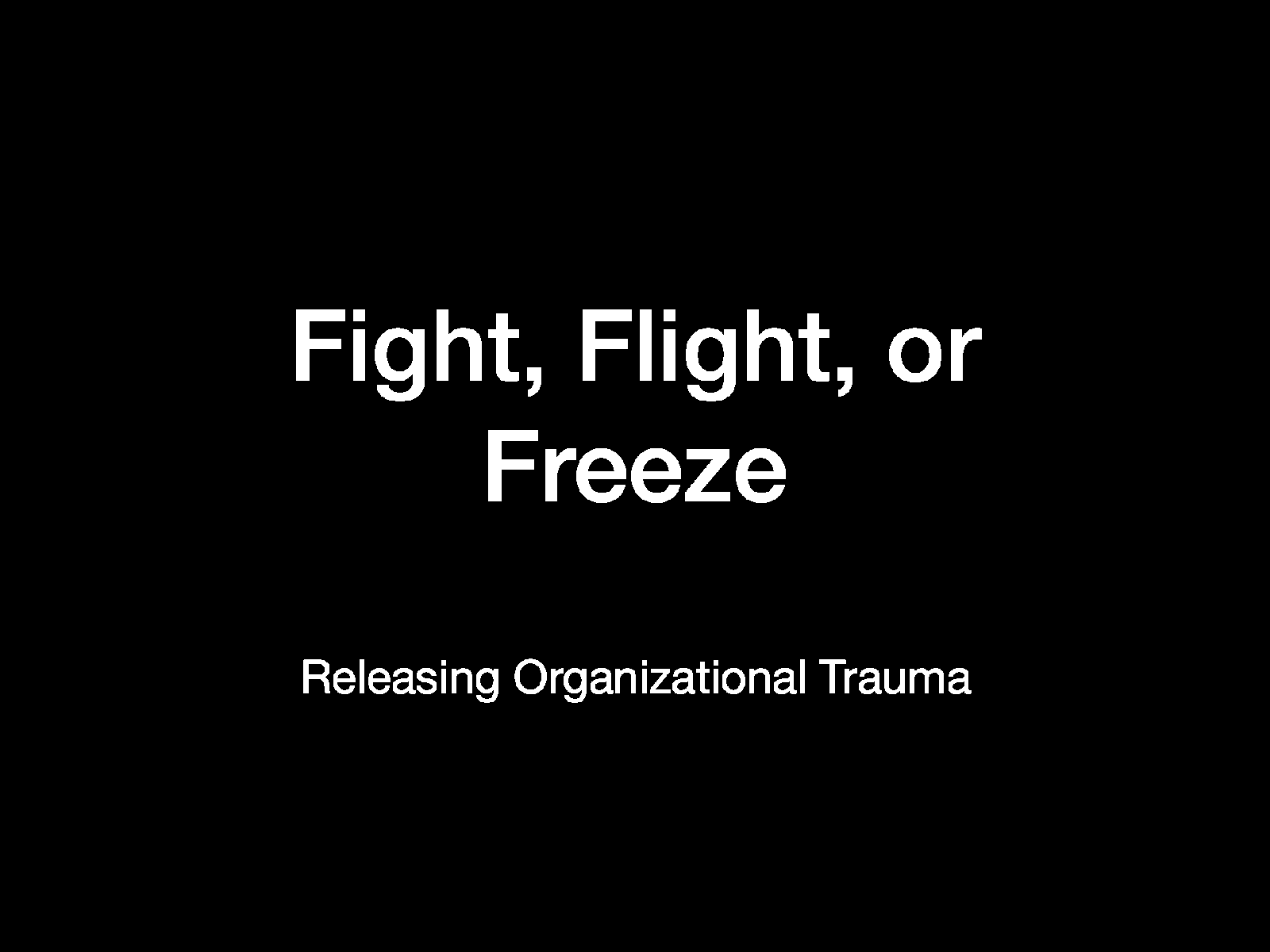 Fight, Flight, or Freeze — Releasing Organizational Trauma