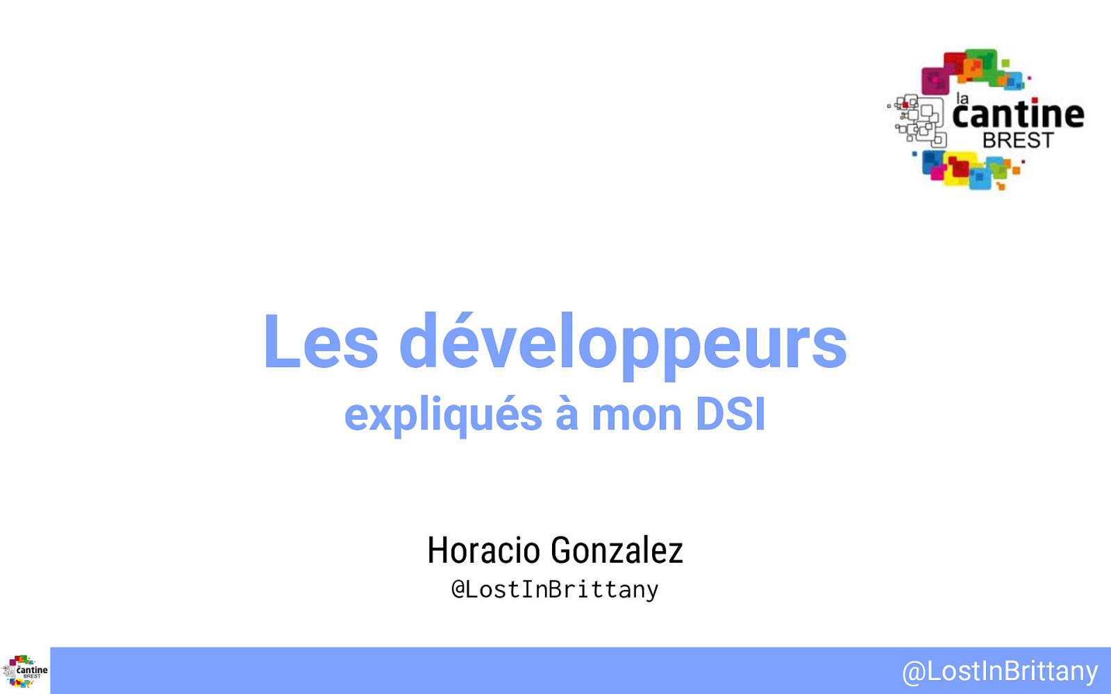 Le développeurs expliqués à mon DSI