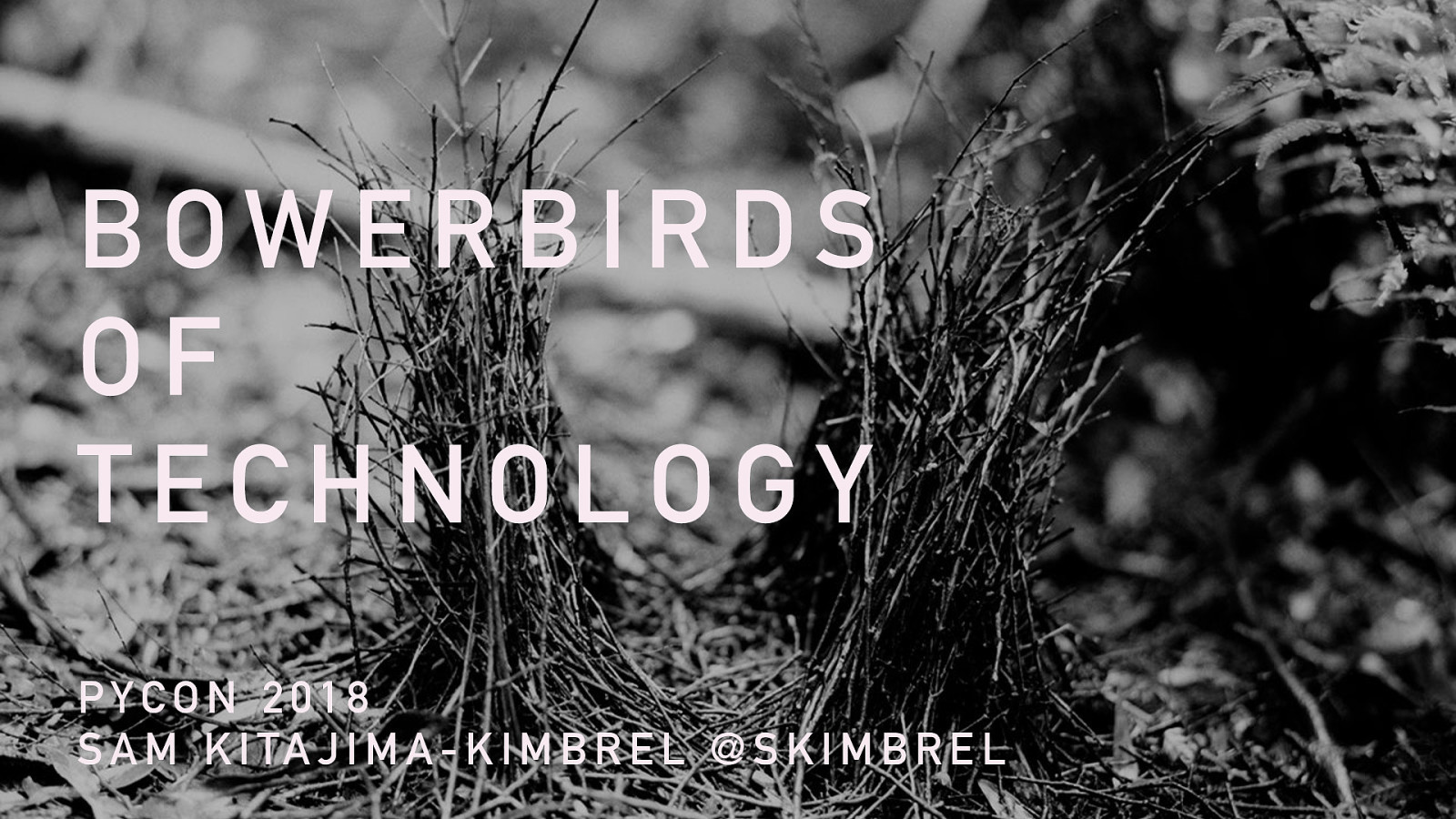 Bowerbirds of Technology: Architecture and Teams at Less-than-Google Scale