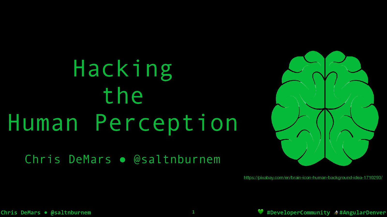 Hacking the Human Perception