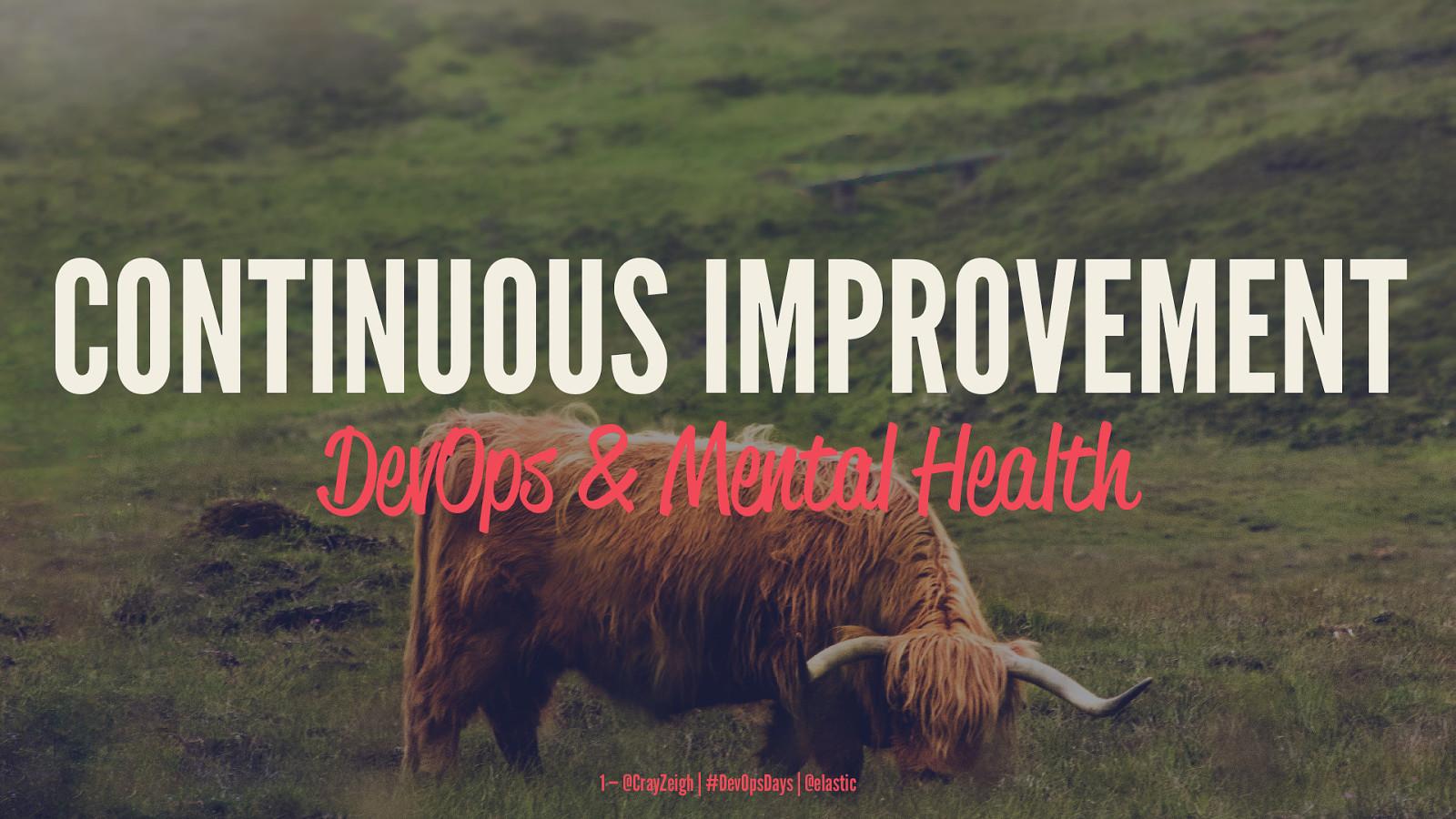 Continuous Improvement: DevOps and Mental Illness
