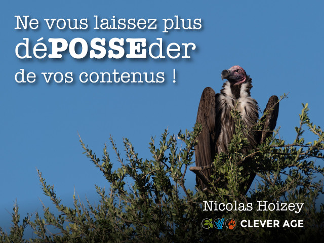 Slides from the talk «Ne vous laissez plus déPOSSEder de vos contenus!»
