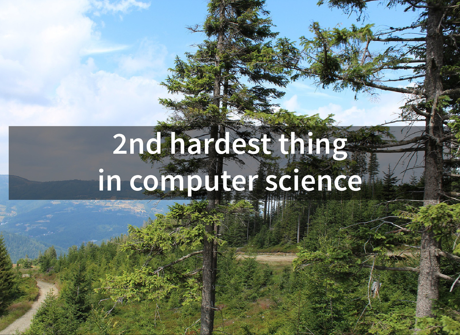 2nd hardest thing in computer science