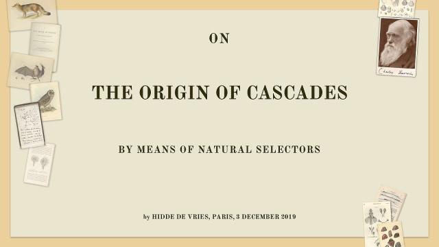 On the origin of cascades