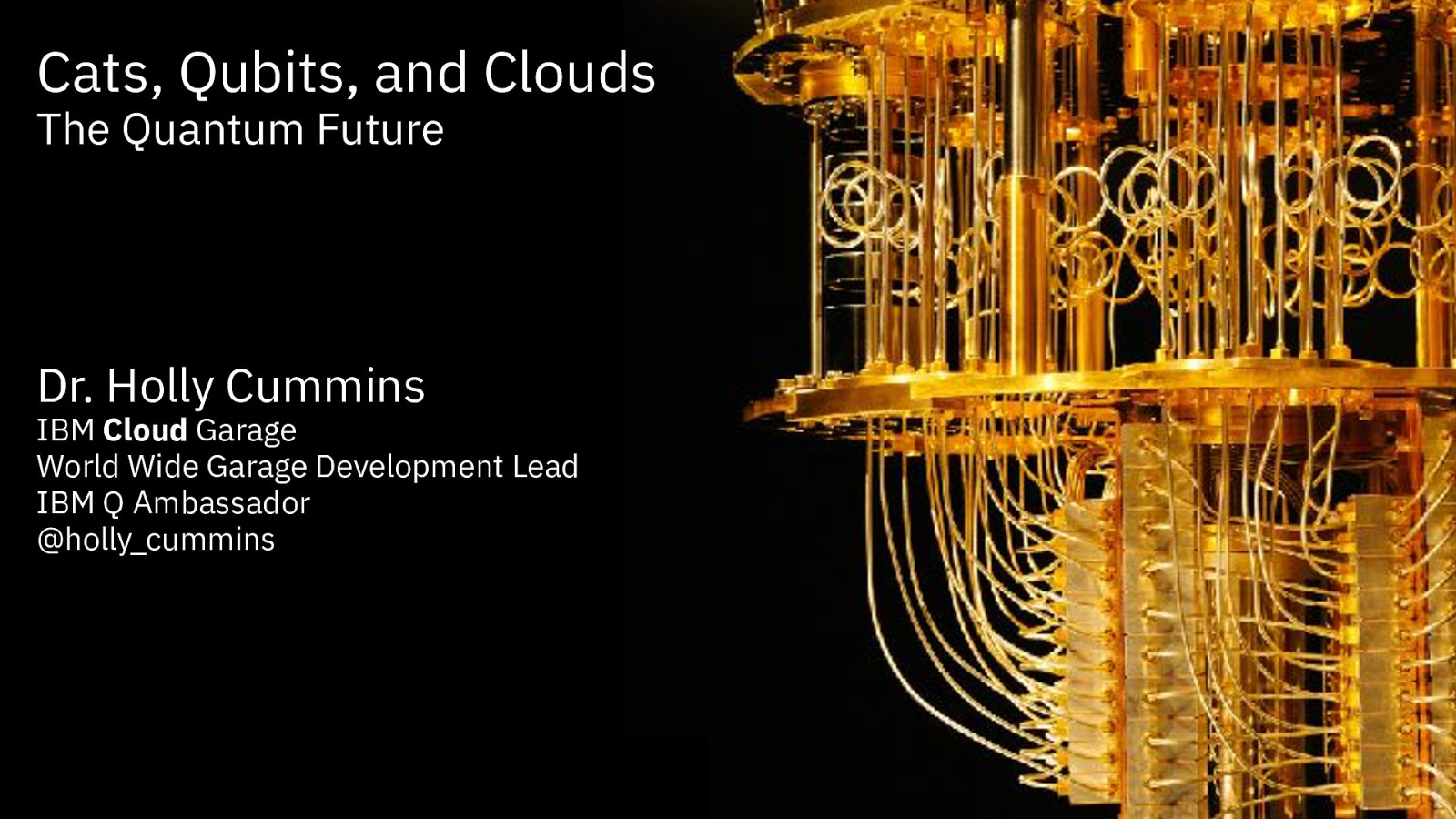 Cats, Qubits, and Clouds - The Quantum Future