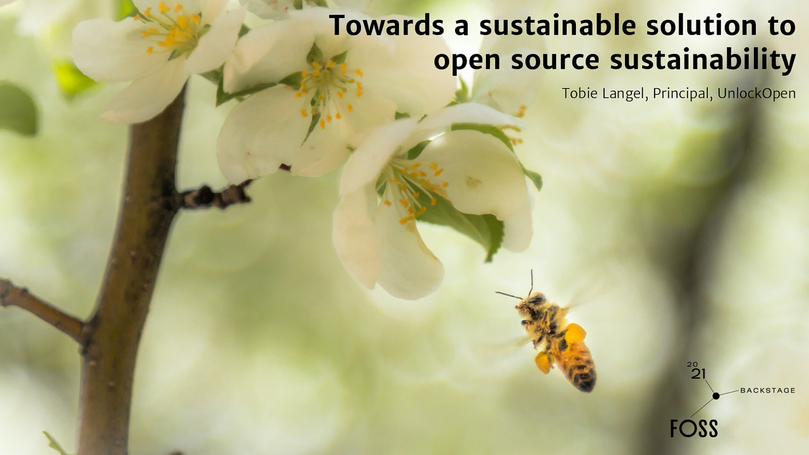 Towards a sustainable solution to open source sustainability