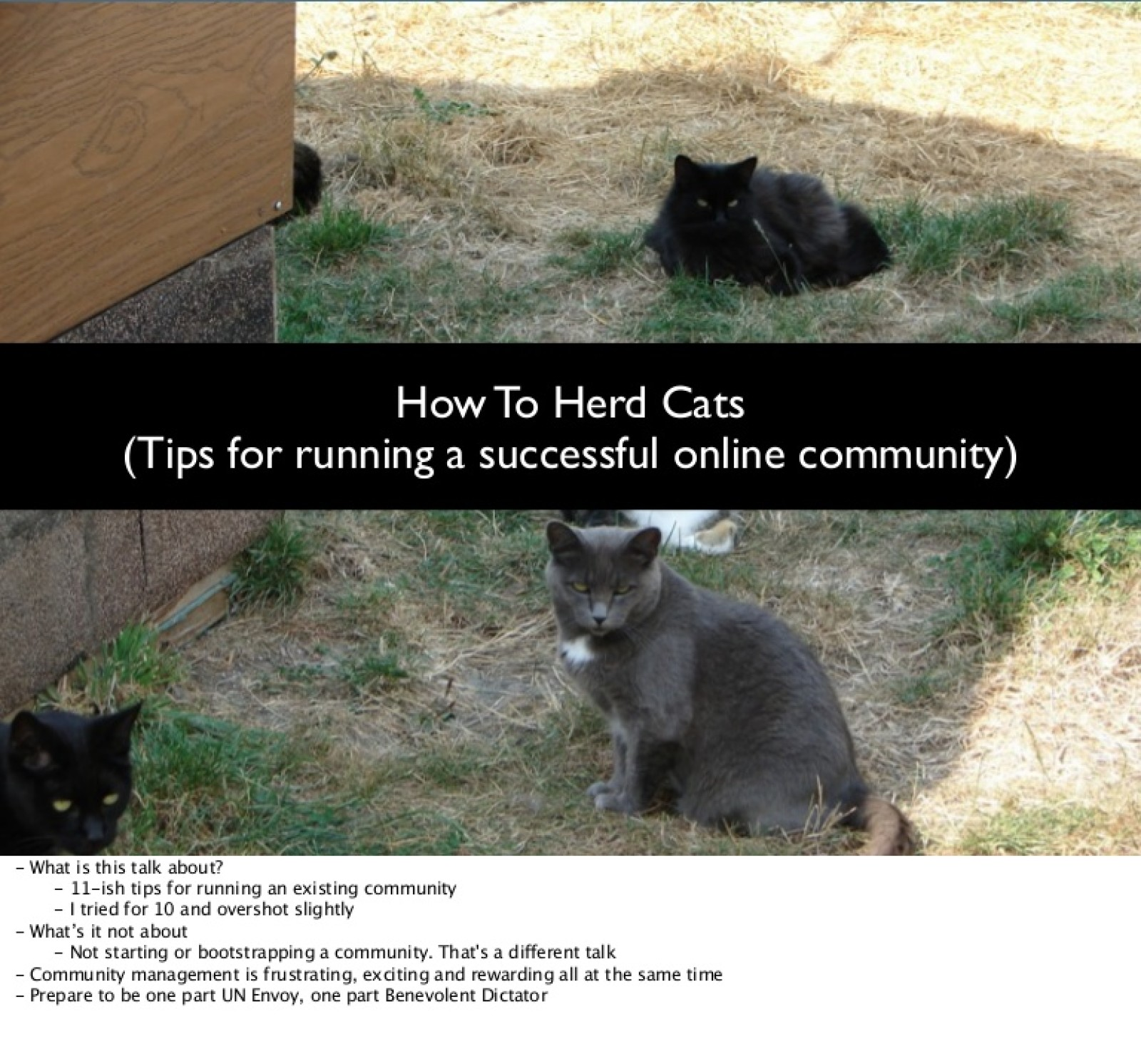How To Herd Cats (tips on running a successful online community)
